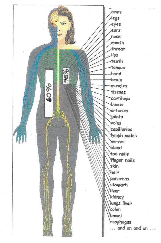 graphic-wnmdc-water-body-1-smaller